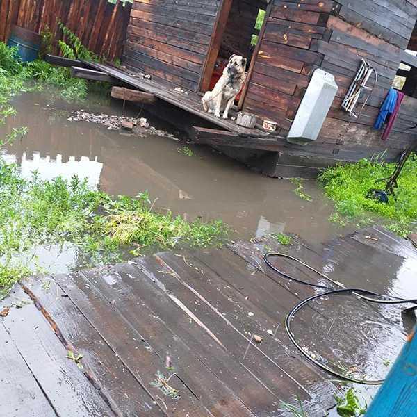 Изображение к статье Дома на окраине Иркутска-II четыре года подряд топит из-за неисправной ливневки На Иркутскинформ