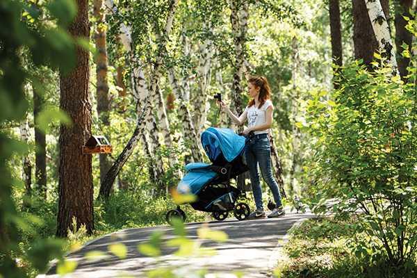 Изображение к статье Сохраним лес для будущего: вИркутске появится городское лесничество На Иркутскинформ