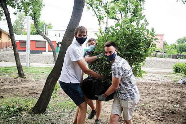Изображение к статье День молодежи в Иркутске отметили посадкой деревьев в новом парке На Иркутскинформ