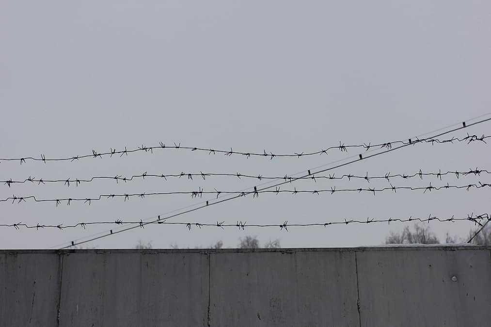 проволока забор колония